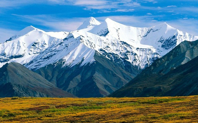 10 TOP HILL STATION